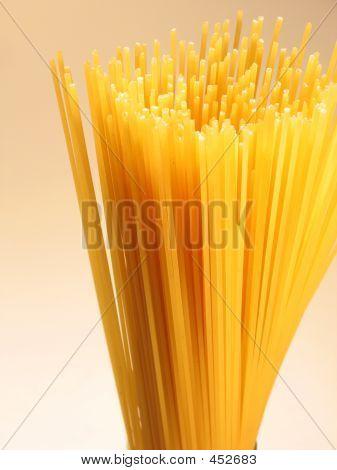 Prickly Spaghetti