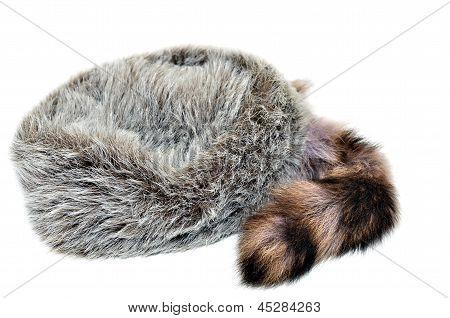 Raccoon Skin Cap