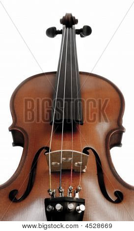 Violin Over White