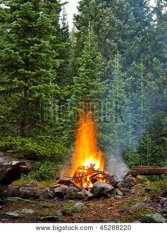 Lagerfeuer auf Wildnis-Campingplatz