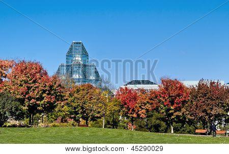 Spectacular Autumn Gallery