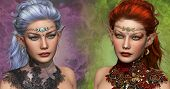 double portrait of two female elven with circlets and ear jewelrys poster