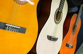 Row of classical acoustic guitars in musical store. Close-up view. poster
