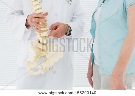 Close-up mid section of a male doctor explaining the spine to a patient in medical office