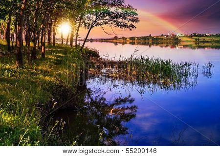 Mountain Lake Near Forest