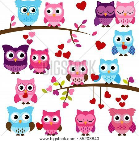 Vector Collection of Valentine's Day or Love Themed Owls