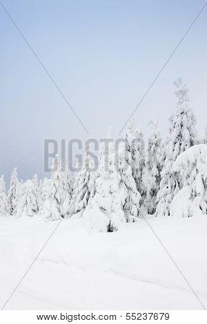 winter landscape, Orlicke Mountains, Czech Republic
