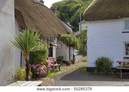 Seaside Cottages, Devon