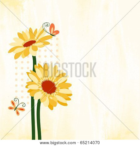 Springtime Colorful Daisy Flower With Butterfly