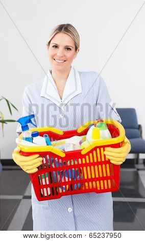 Young Maid With Cleaning Equipment