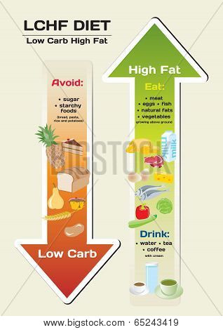 Diet Low Carb High Fat (LCHF) infographic poster