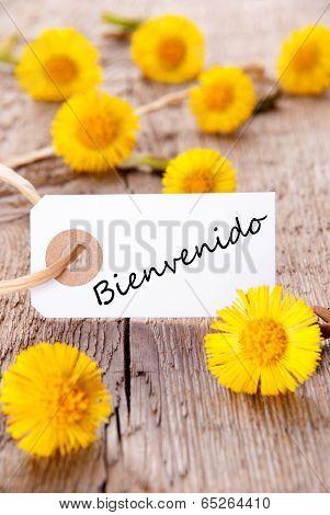 Yellow Flowers With Bienvenido