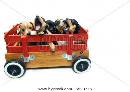 A Wagon Full
