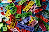 Thank You Word Cloud printed on colorful paper different languages poster