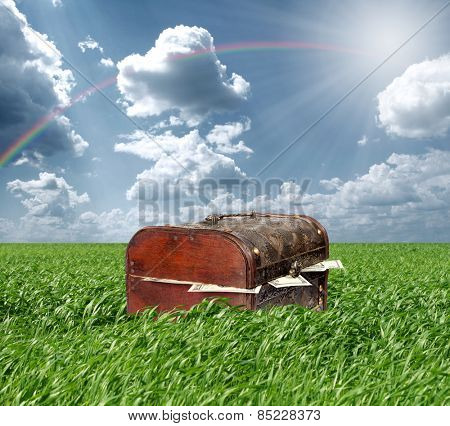 Treasures chest in green grass and blue cloudy sky, USA dollars in box poster