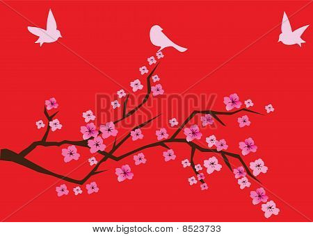vector cherry blossom with birds on red background poster
