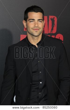 LOS ANGELES - MAR 11:  Jesse Metcalfe at the