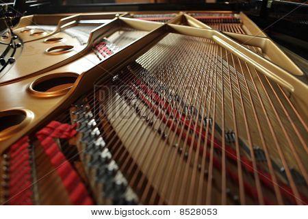 Inside A Grand Piano
