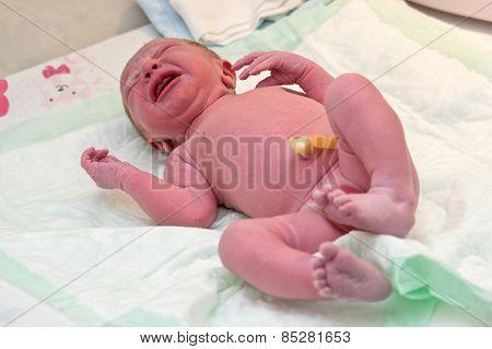 Newborn Baby Boy Crying