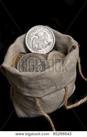 Usa Silver Dollar In Bag