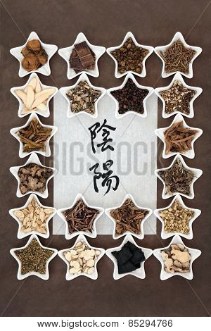 Chinese herbal medicine selection with yin and yang symbols in calligraphy script on rice paper. Translation reads as yin yang. poster