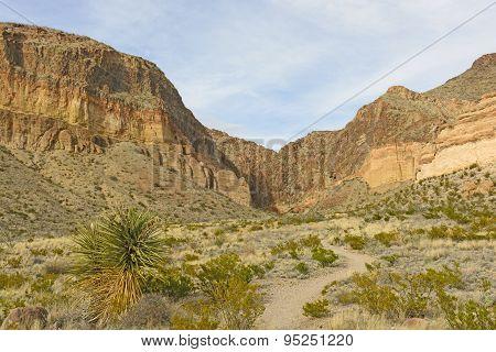Remote Trail Into The Desert