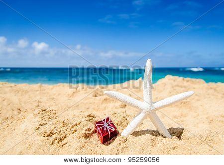 Starfish With Gift Box On The Sandy Beach