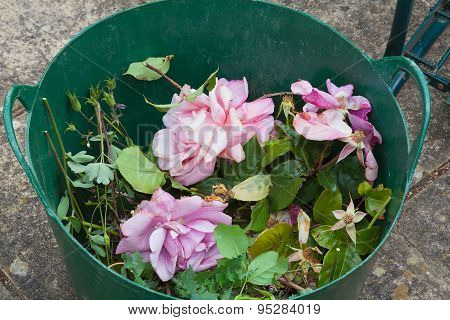 Rose Flowers In A Basket After Pruning