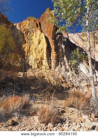 Strong upwards Ochre lines and tree in a dry creek
