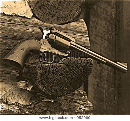 .44 Magnum Revolver