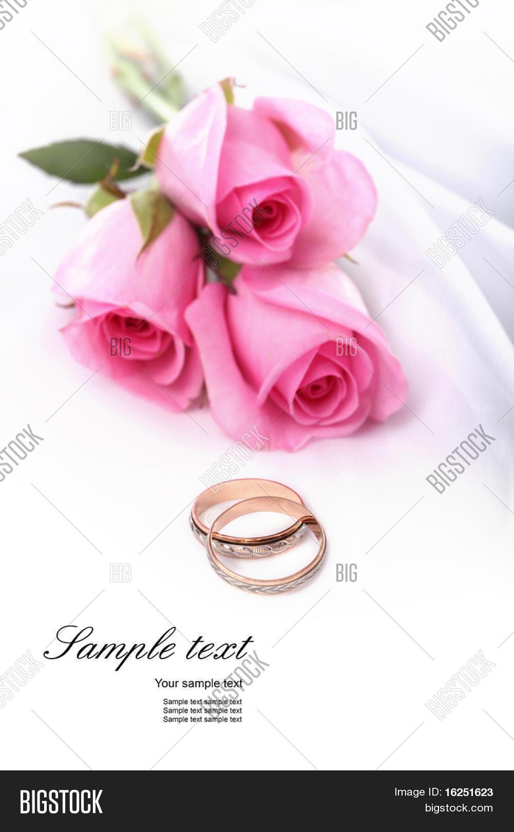 Wedding Rings Pink Image & Photo (Free Trial) | Bigstock