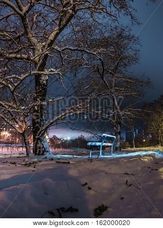 bench and trees in the snow in the light of night lanterns