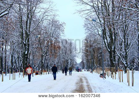 Chernihiv / Ukraine. 03 December 2016: people walk in beautiful winter park with many big trees and path. 03 December 2016 in Chernihiv / Ukraine.