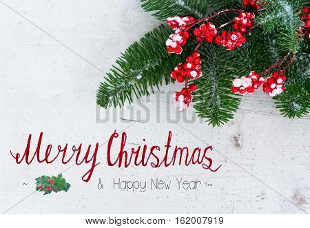 green and white christmas - twig with red berries and green evergreen tree twig with merry christmas greetings
