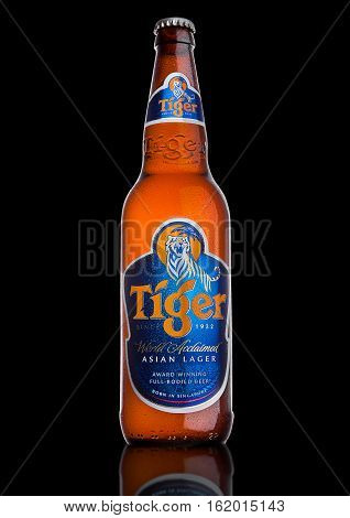 LONDON UK DECEMBER 15 2016: Bottle of Tiger Beer on black background First launched in 1932 is Singapore's first brewed beer.