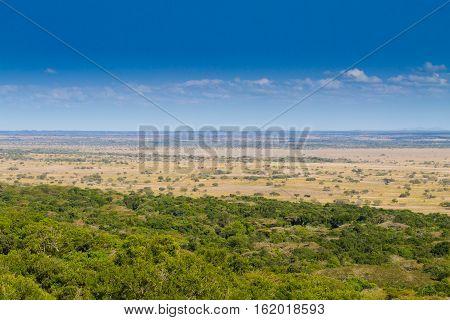 Isimangaliso Wetland Park Landscape
