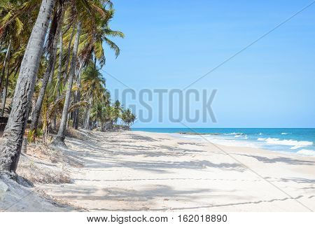 Beach Surrounded By Coconut Trees With The Waves On A Beautiful Sunny Day With Blue Sky. Praia Do Se