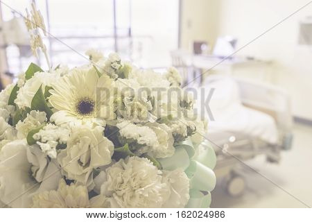 abstract floral for get well soon from six - can use to display or montage on product