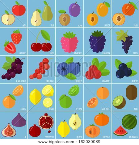 Vector flat design fruits and berries icon set.