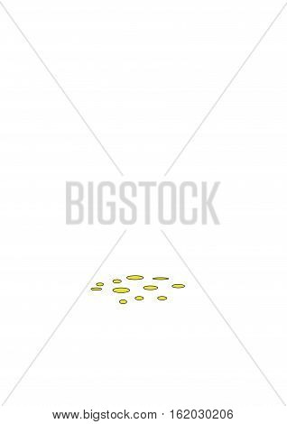 Yellow corn is scattered on a white background.