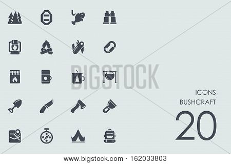 bushcraft vector set of modern simple icons