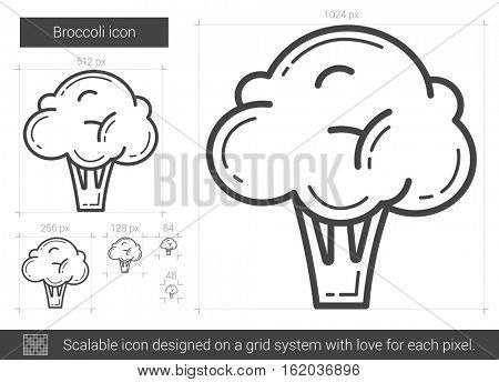 Broccoli vector line icon isolated on white background. Broccoli line icon for infographic, website or app. Scalable icon designed on a grid system.