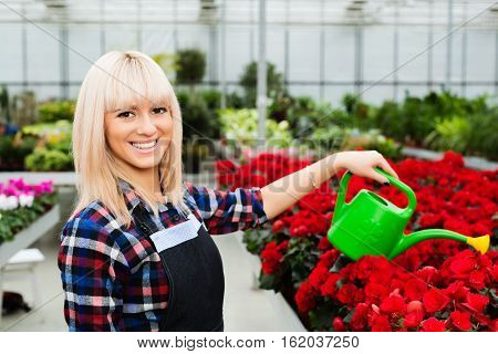 Positive woman gardener watering flowers looking at camera and smiling. Working in a garden center