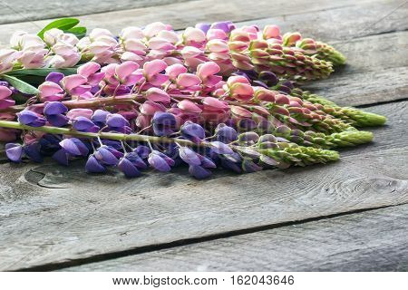 Wildflowers lupines bouquet on a wooden table. St. Valentine's Day
