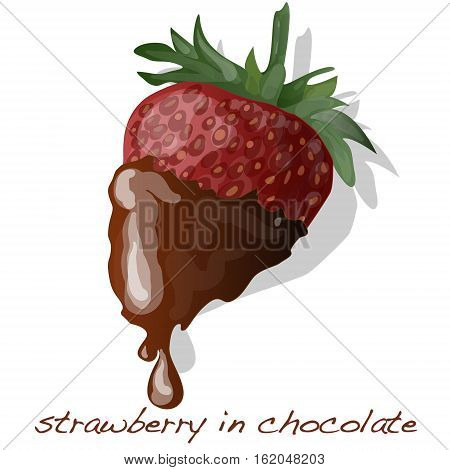 strawberry dipped in chocolate fondue image isolated .