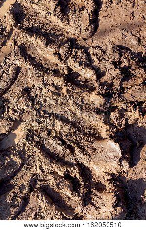 all terrain vehicle deep mark on mud