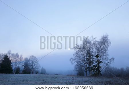 Cold morning in Sumava National park hills and trees in the fog and rime misty view on czech landscape blue winter scene.