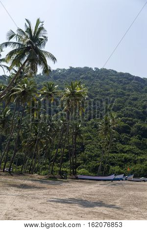 Boats at Anjuna beach in Goa, India