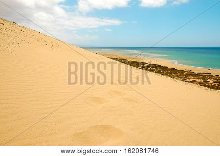 View on the sand dunes of the beach Playa de Sotavento blue ocean and windsurfers and tourists far away on the Canary Island Fuerteventura Spain.