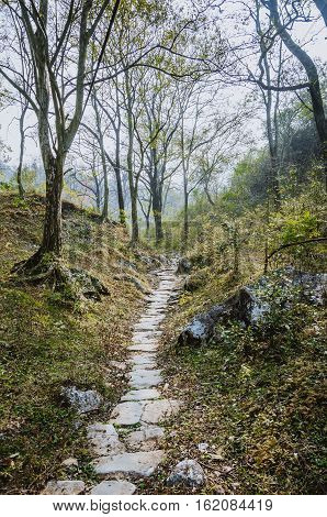 The ancient stone path in the mountains